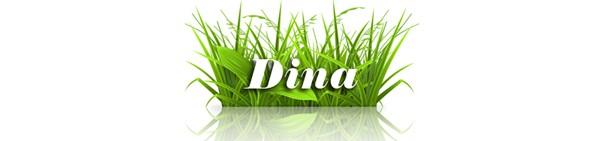 Dina's Salon